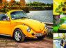Senovinio automobilio VW KAEFER nuoma (1)