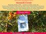 Hamamelio - ekstraktas 20ml - SUSKIRDUSIAI, ŠIURKŠČIAI, JAUTRIAI odai (1)