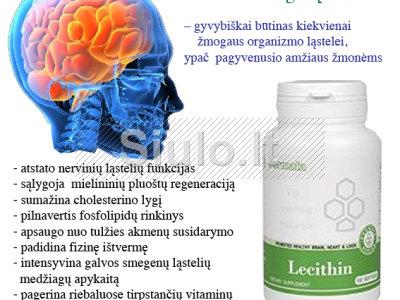 PAGYVENUSIO AMŽIAUS ŽMONĖMS - gerina smegenų veiklą ir atmintį