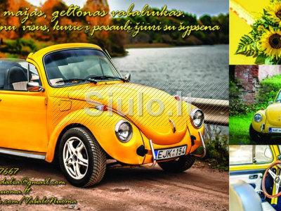 Senovinio automobilio VW KAEFER nuoma