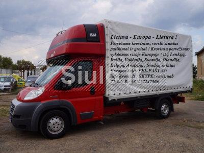 Transporto Paslaugos įmonėms