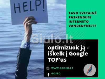 www. GoSeo. lt - SEO paslaugos, SEM, svetainių kūrimas